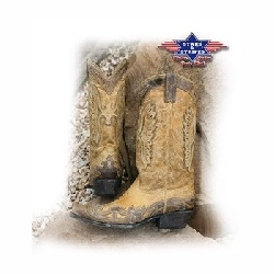 Bottes Stars and Stripes WB19