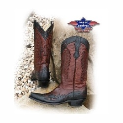 Bottes Stars and Stripes WB20