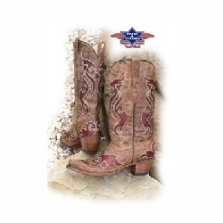 Bottes Stars and Stripes WBL22